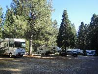 Dutch Flat RV Resort 50% Off Camping