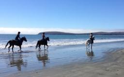 Doran-Beach- horseback-riders-470