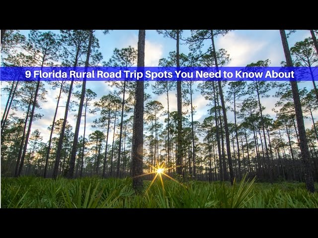 9 Florida Rural Road Trip Spots You Need to Know About