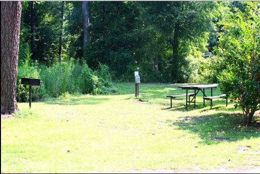 Charleston KOA  - Ladson, SC - RV Parks