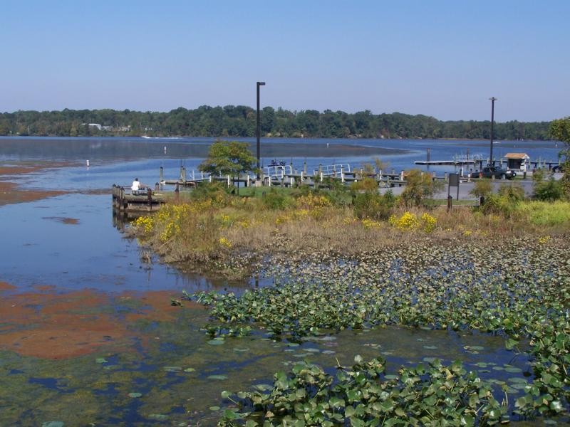 Smallwood State Park - Annapolis, MD - Maryland State Parks