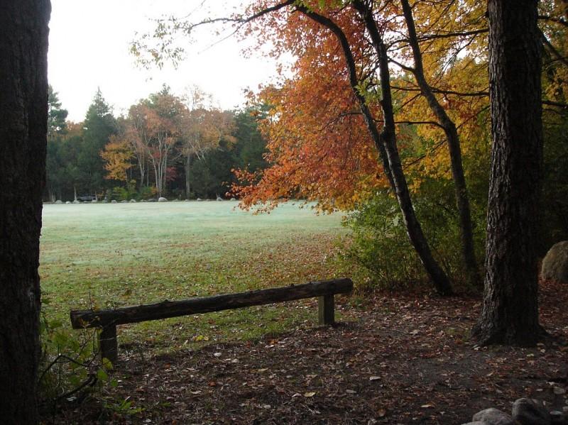 Pachaug State Forest - Voluntown, CT - RV Parks