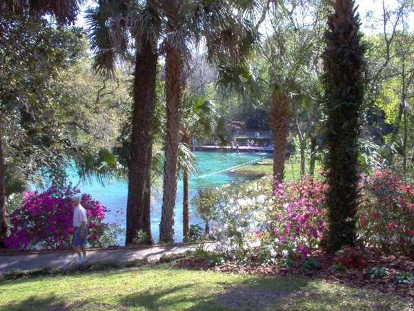 Rainbow Springs State Park Campground - Dunellon, FL - Florida State Parks