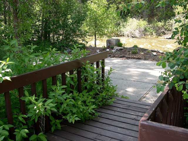 Woodlands Camping Resort - Elkton, MD - RV Parks