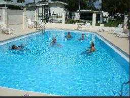 Palm View Gardens Rv Resort - Zephyrhills, FL - RV Parks
