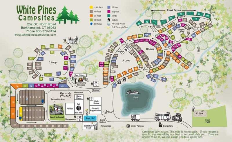 White Pines Campsites - Barkhamsted, CT - RV Parks
