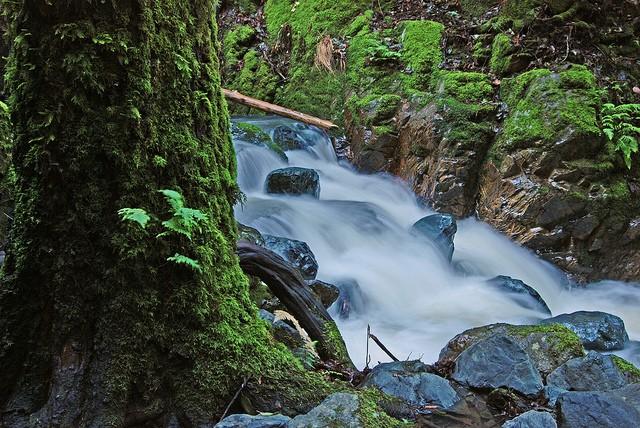Sugarloaf Ridge State Park Kenwood Ca California