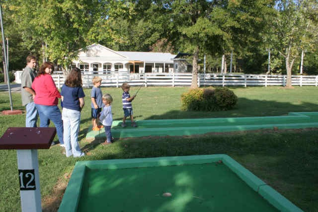 Little Mountain Marina Resort - Langston, AL - RV Parks