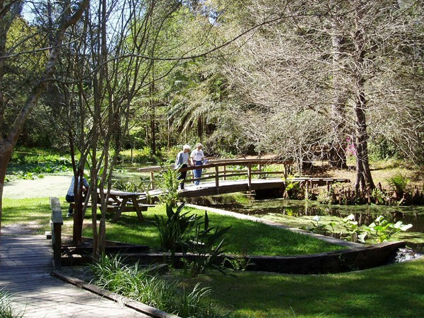 Ravine Gardens State Park - Palatka, FL - Florida State Parks ...