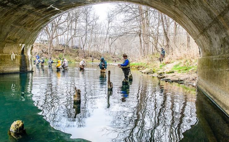 Bennett spring state park lebanon mo missouri state for Bennett springs trout fishing