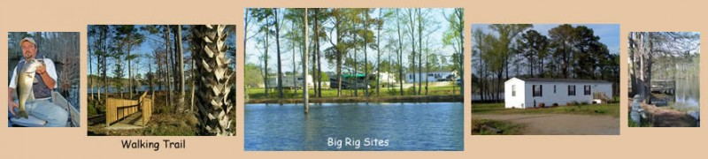 Big Cypress Lake RV Park - Conway, SC - RV Parks