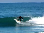 Surf and Turf Rv Park - Del Mar, CA - RV Parks