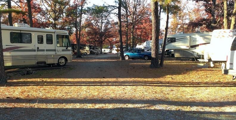 Americamps RV Resort - Ashland, VA - RV Parks