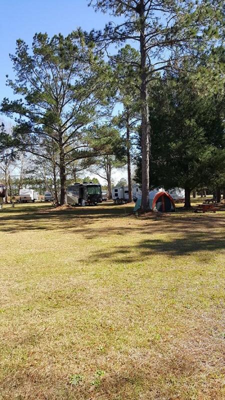 Sun Runners Rv Park - Gulf Shores, AL - RV Parks