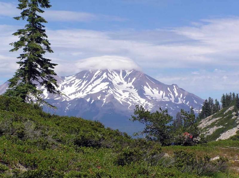 Abrams Lake RV Park - Mt Shasta, CA - RV Parks