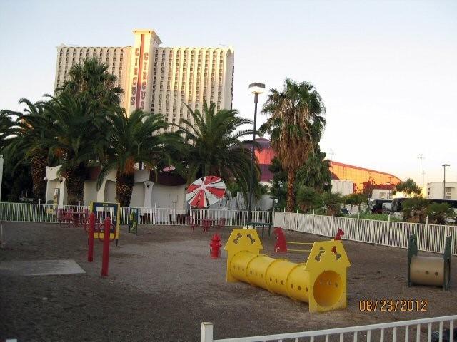Las Vegas KOA at Circus Circus - Las Vegas, NV - KOA