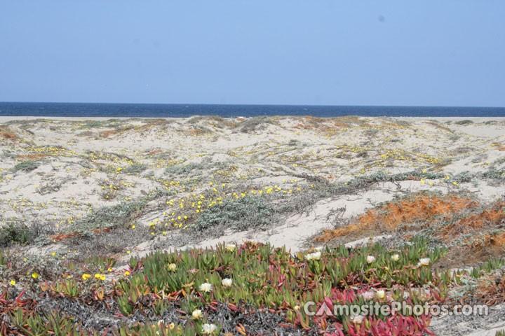 McGrath State Beach - Oxnard, CA - RV Parks