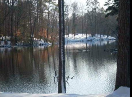 Big Bear Family Campground Windsor Va Rv Parks