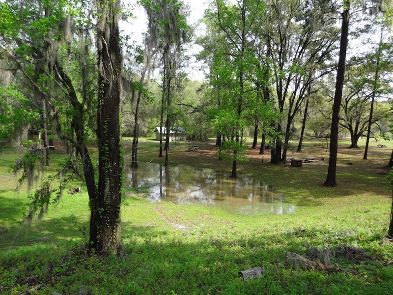 Lake Jackson Mounds Archaeological State Park - Tallahassee, FL - Florida State Parks