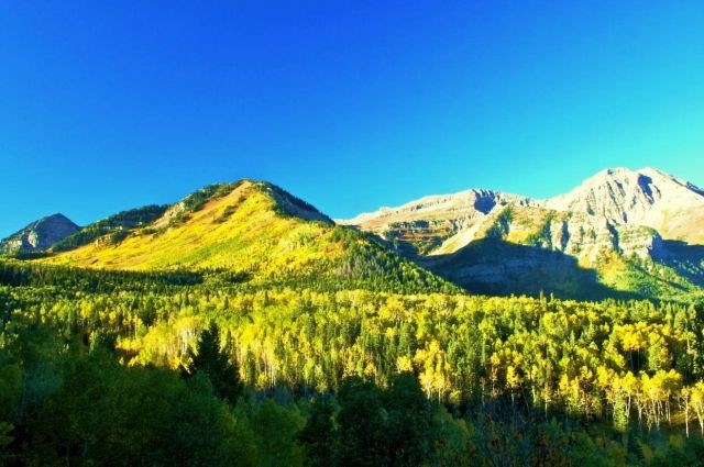Wasatch Mountain State Park - Midway, UT - Utah State Parks