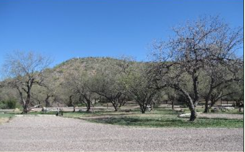 Burnt Corral Campground - Roosevelt, AZ - RV Parks