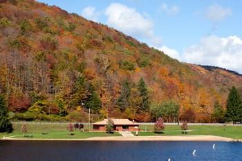 Lyman Run State Park Galeton Pa Pennsylvania State