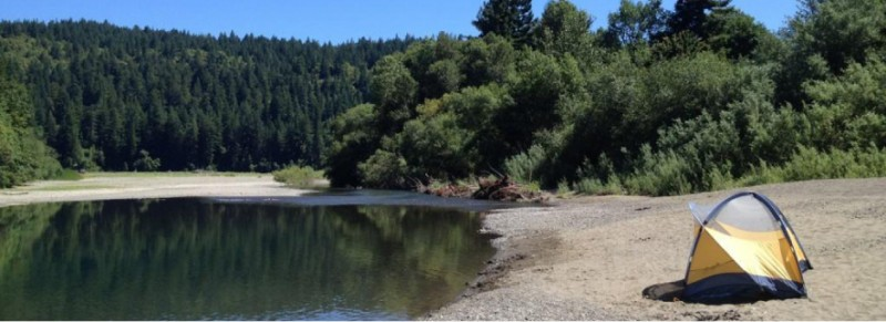 Giant Redwoods Rv & Camp - Myers Flat, CA - RV Parks