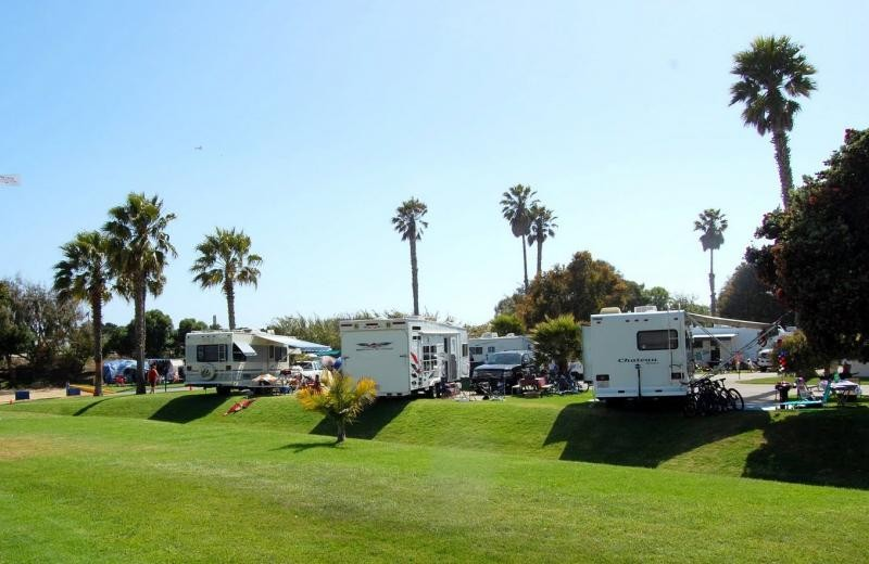 Ventura Beach Rv Resort Ca Parks