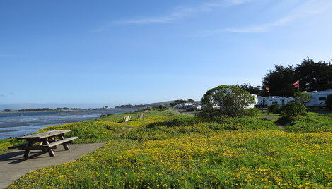 Westside Regional Park Bodega Bay Ca County City