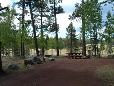 Winn Campground Apache Sitgreaves National Forest