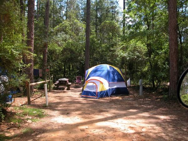 Blackwater River State Park - Holt, FL - Florida State Parks