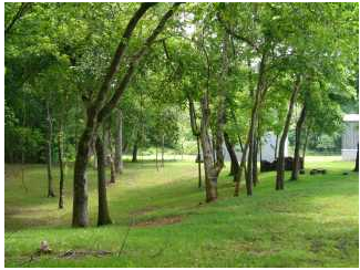 Whitney Lane Rv Park - Kensett, AR - RV Parks