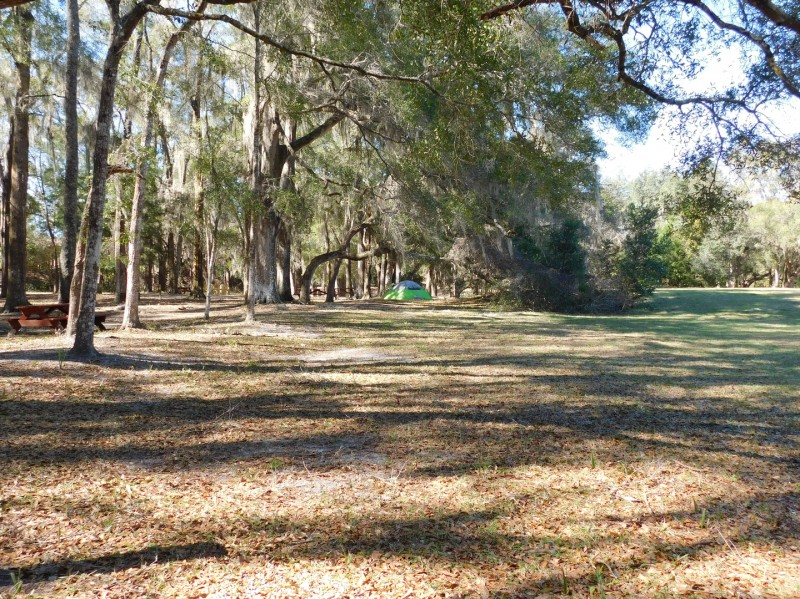 Devils Den Spring - Williston, FL - RV Parks