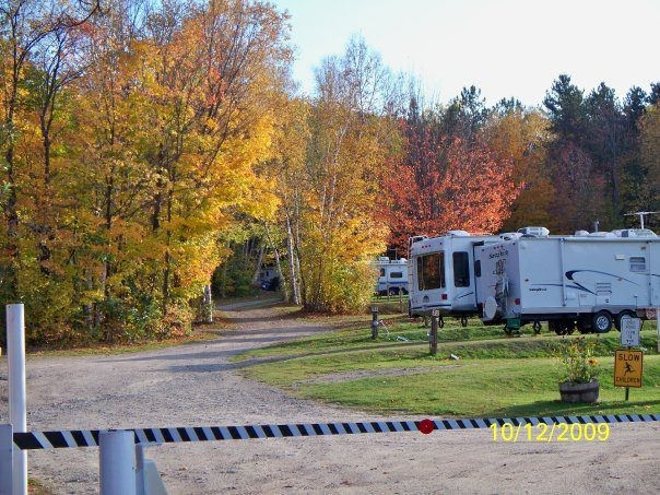 White Birches Camping Park - ,  - RV Parks