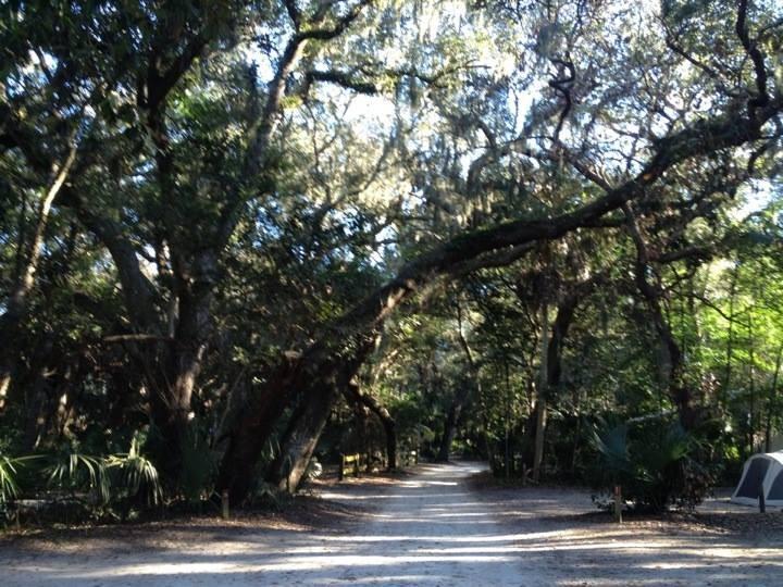 Tomoka State Park - Ormond Beach, FL - Florida State Parks