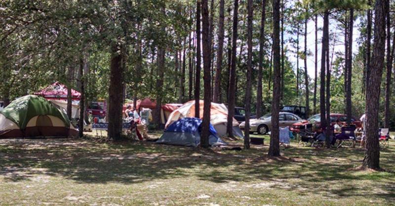 Jellystone Park - Elberta, AL - RV Parks