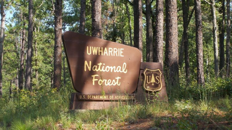 Badin Lake Campground Uwharrie National Forest Troy Nc