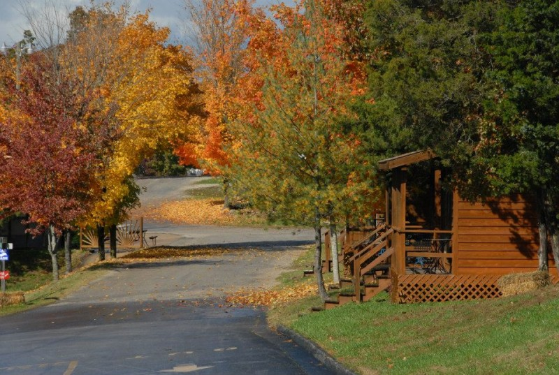 America's Best Campground - Branson, MO - RV Parks