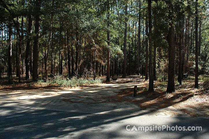 Carolina Beach State Park - Carolina Beach, NC - North Carolina State Parks