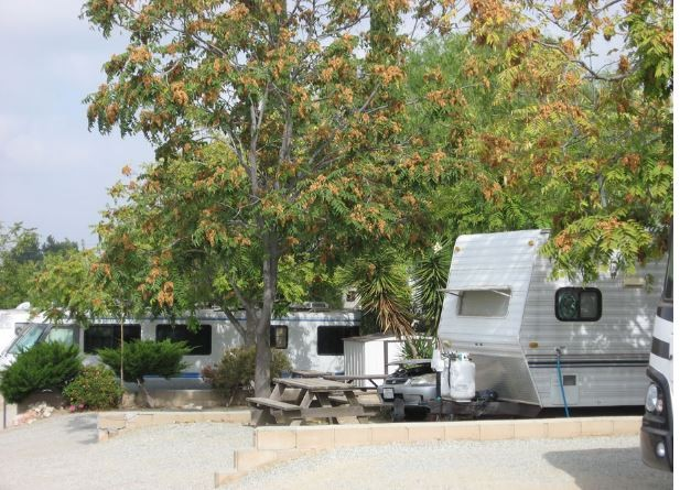 Country Hills Rv Park - Beaumont, CA - RV Parks