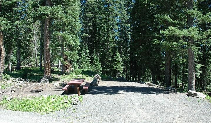 Little Bear RV Park - Blairsden, CA - RV Parks