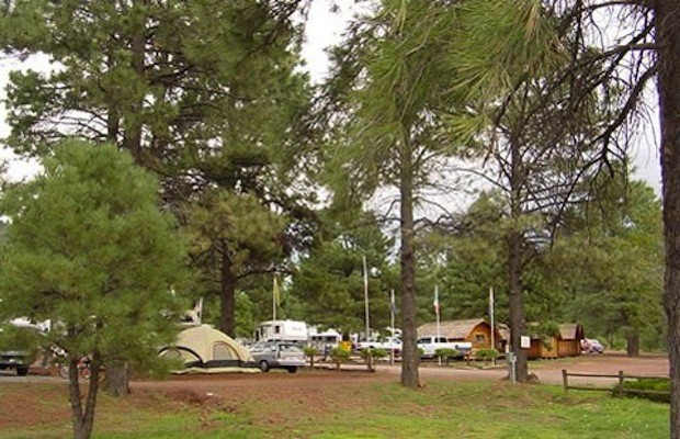 Circle Pines KOA - Williams, AZ - RV Parks