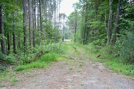 Whispering Pines Campsites - Greenfield Center, NY - RV Parks