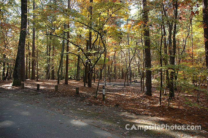William B. Umstead State Park - Raleigh, NC - North Carolina State Parks