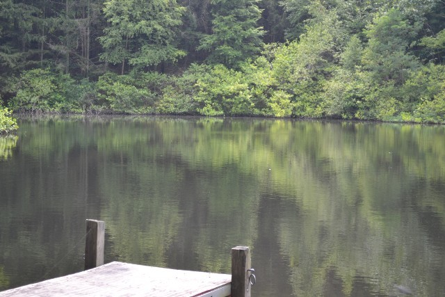 cranberry lake buddhist dating site Join the discussion this forum covers cranberry lake, ny local community news, events for your calendar, and updates from.