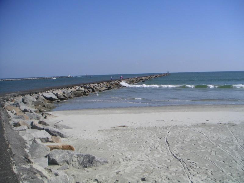 Huntington Beach State Park Murrells Inlet Sc South Carolina Parks