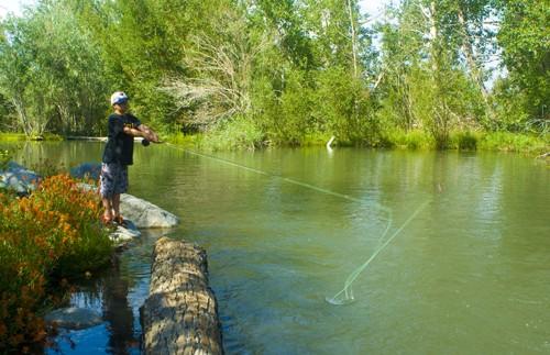 McGee Creek RV Park - Mammoth Lakes, CA - RV Parks
