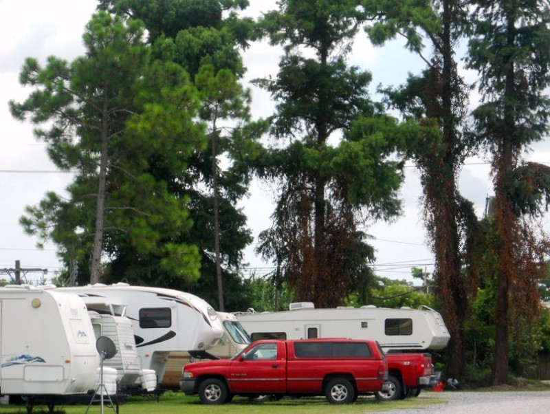 Jude Travel Park of New Orleans - New Orleans, LA - RV Parks