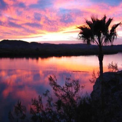 Bonita Mesa Rv Resort Yuma Az Rv Parks Rvpoints Com