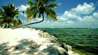 Twin Lakes Travel Park - Davie, FL - RV Parks